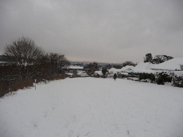 Tiverton : Field Behind Southfield Way