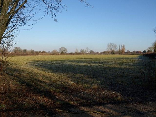 Field beside Oilmill Lane