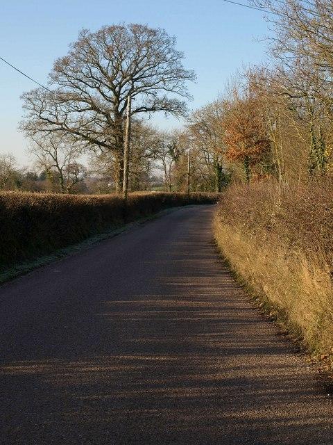 Oilmill Lane