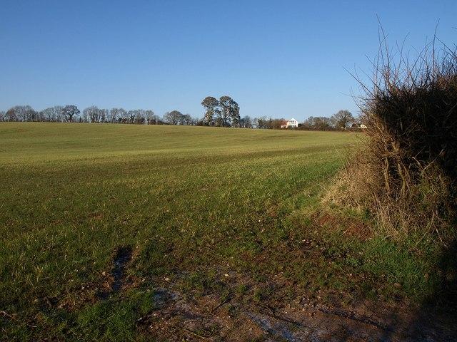 Field at Greendale