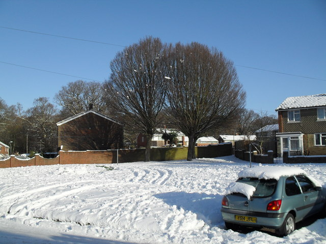 Heavy snow in West Leigh (2)