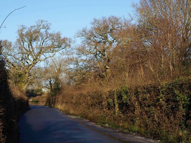 White Cross Road