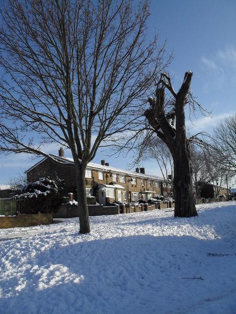 Kimbridge Crescent after heavy snow