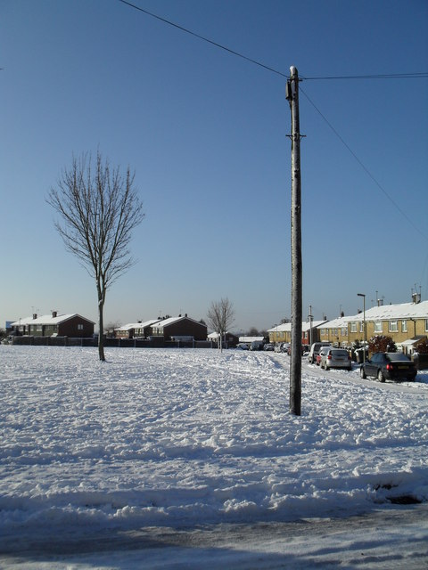 A snowy green in West Leigh (1)
