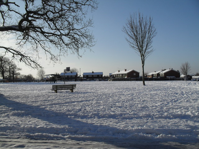 A snowy green in West Leigh (2)