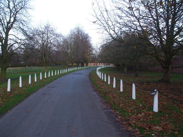 Lane to Wiseton Hall