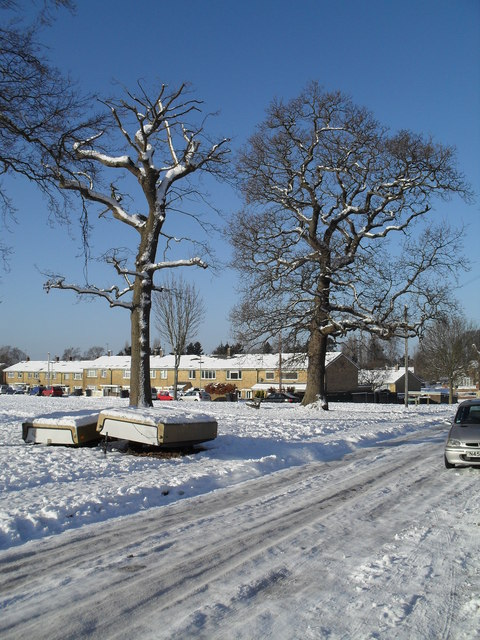 A snowy green in West Leigh (3)