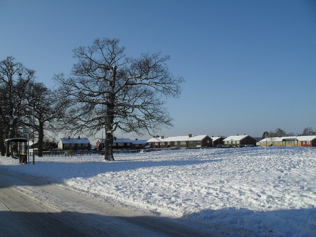 A snowy green in West Leigh (4)