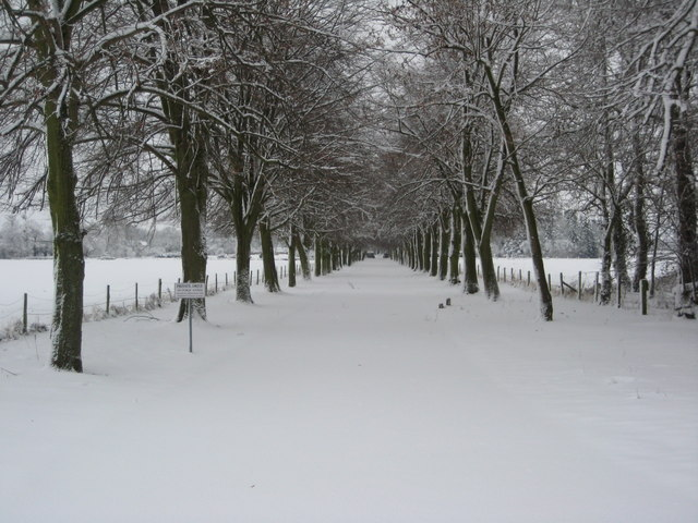 Snow Covered drive, Earl's Croome