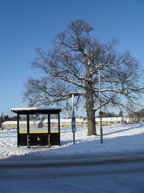 Bus shelter in Prospect Lane