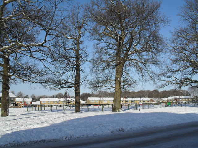 A snowy green in West Leigh (5)