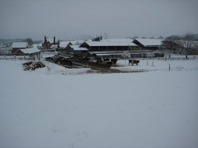 Ryall Court Farm