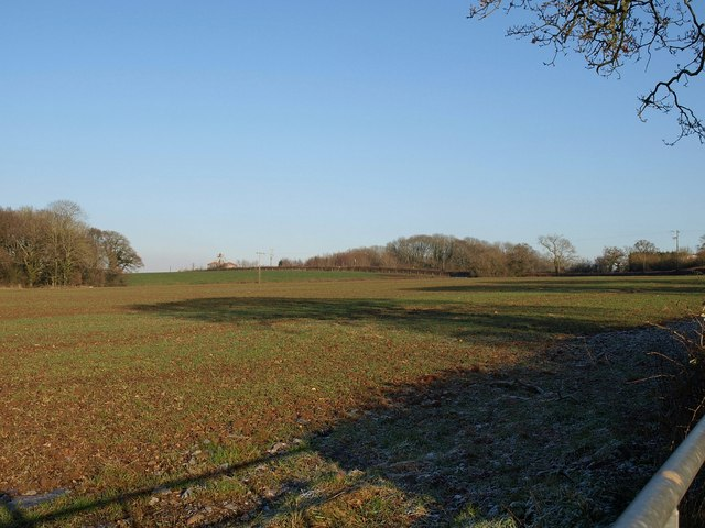 Field near Woodbury Salterton (2)