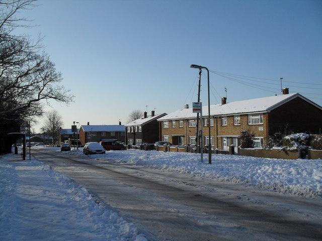 Bus stops in Prospect Lane