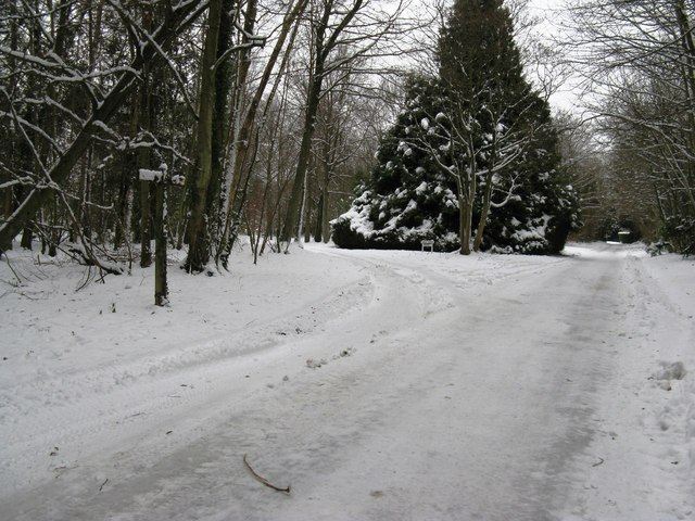 Road and footpath through Dale Park