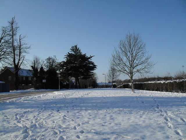 A snowy green in Martin Road