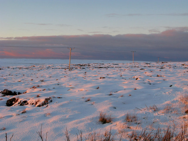Power lines on the Barvas Moor