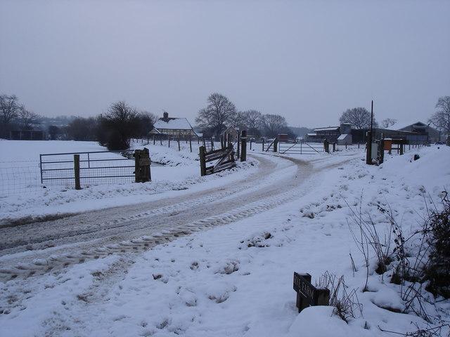 Rye Farm