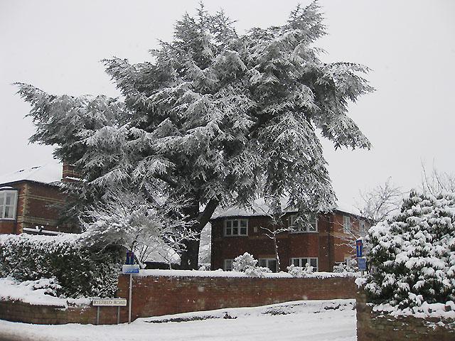 Ryefield Road, winter view