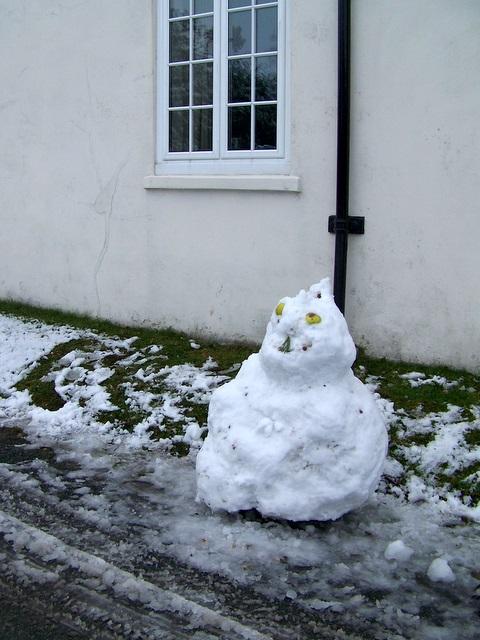 Frosty in Bishopstone