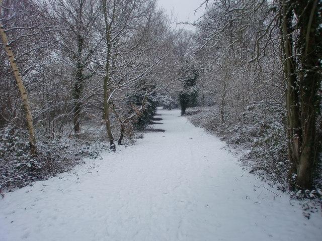 Footpath, Oakwood Park, London N14