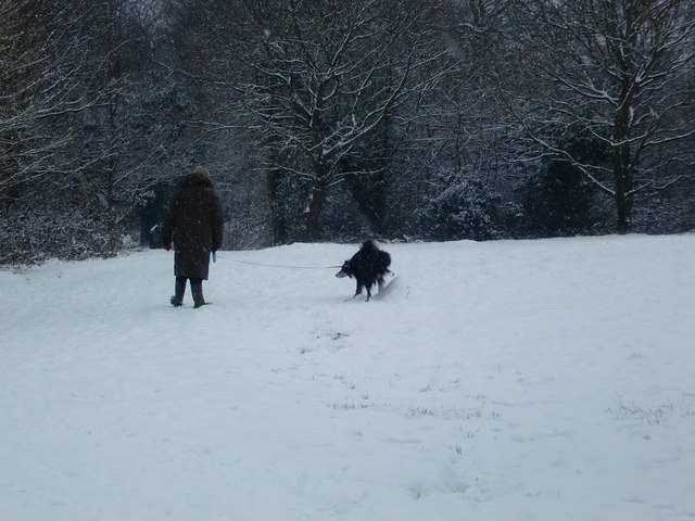 Walking the dog, Oakwood Park, London N14