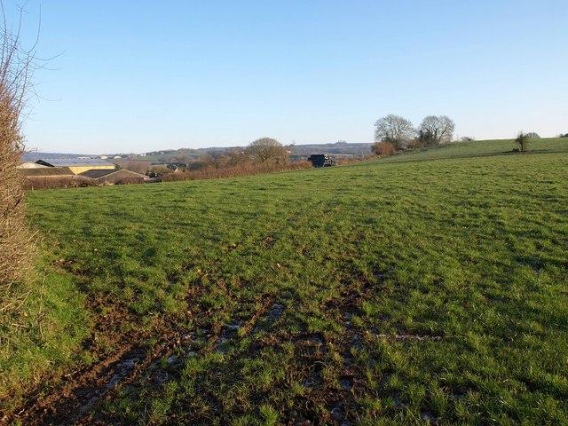 Field above Woodbury Salterton