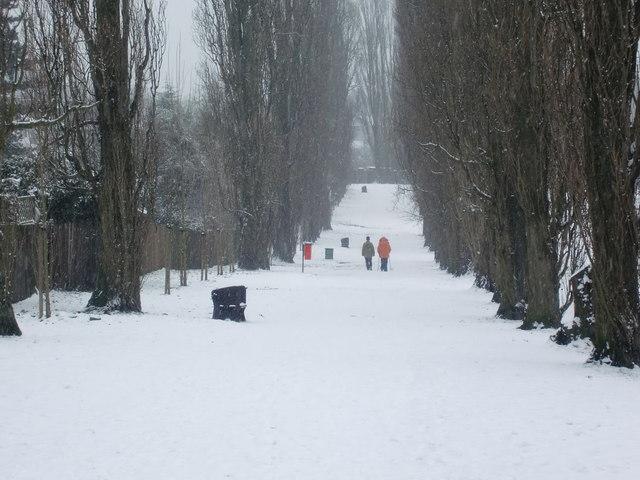Snowy walk, Oakwood Park, London N14