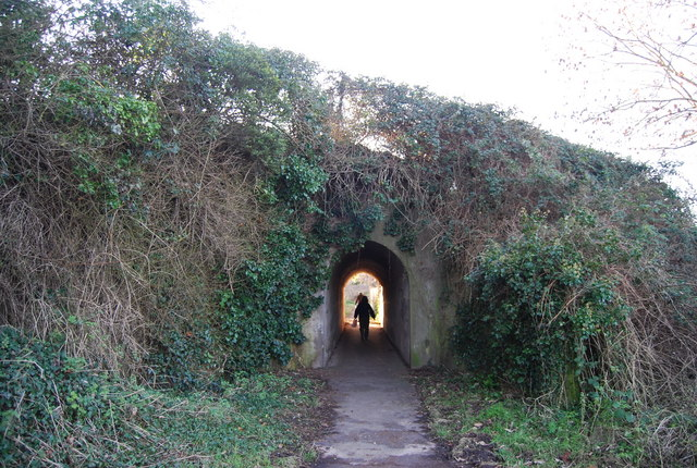 Tunnel on the footpath to St Decumans