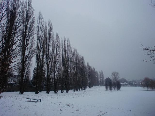Poplar Avenue, Oakwood Park, London N14 in the snow