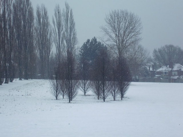 Oakwood Park in the snow, London N14