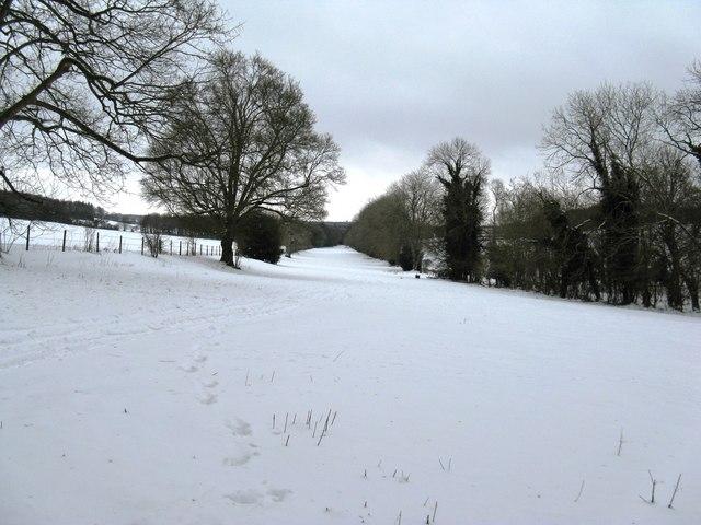 Tree lined footpath north to Madehurst