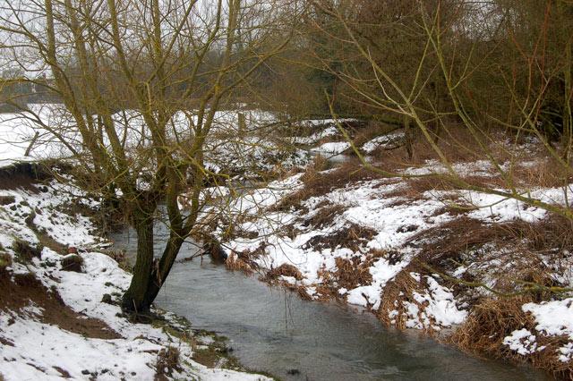 The River Leam near Birdingbury station (1)