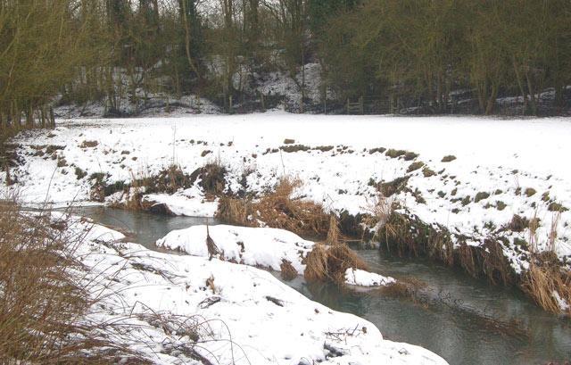 The River Leam near Birdingbury station (3)