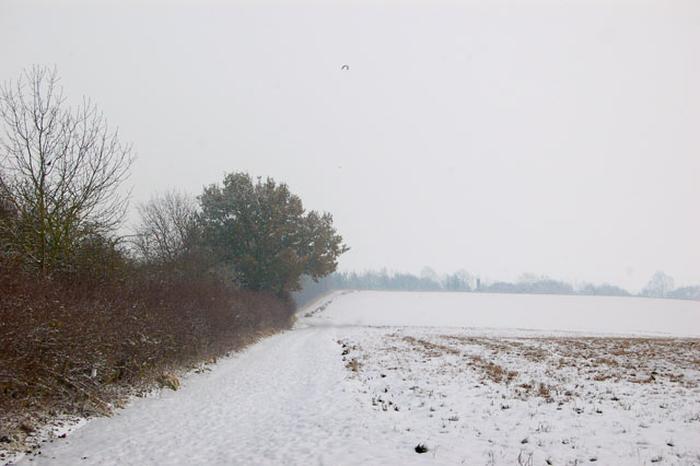 Looking east along the footpath beside the motorway, Dunchurch