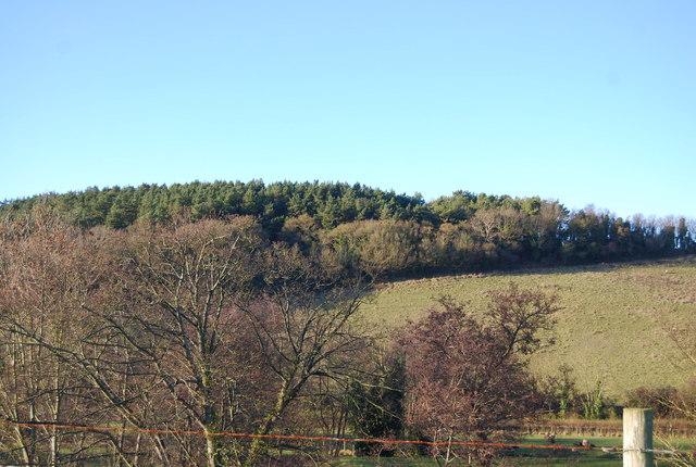 Woodland north of Kentsford Farm
