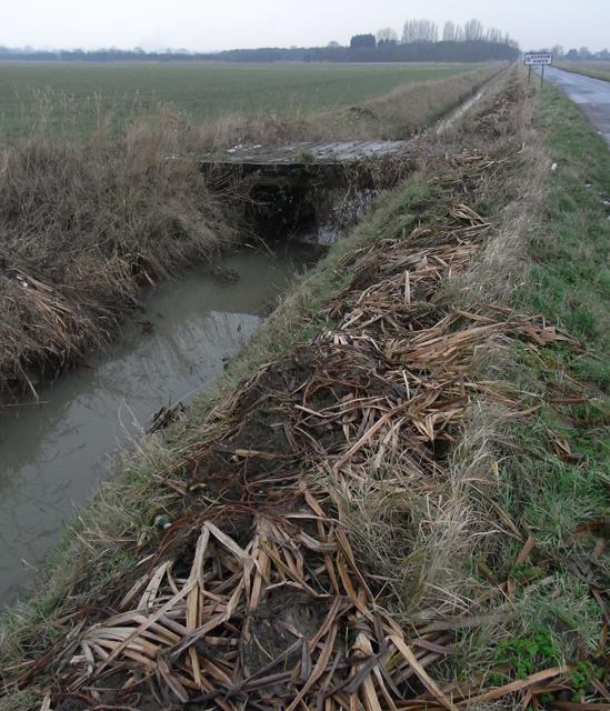 Drain and Field Bridge near New Holland