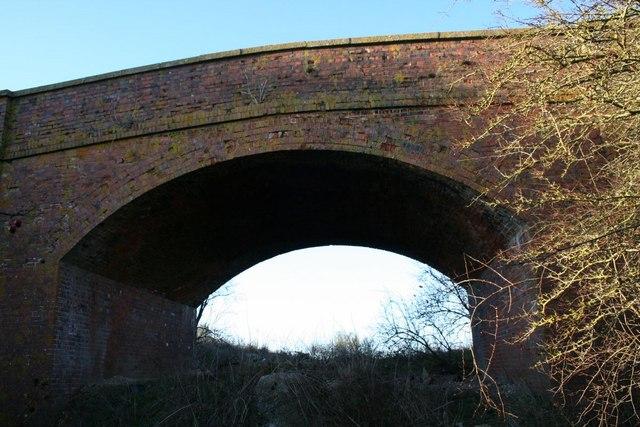 Looking through the bridge