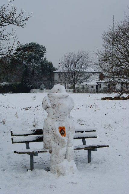Well-read Snowman