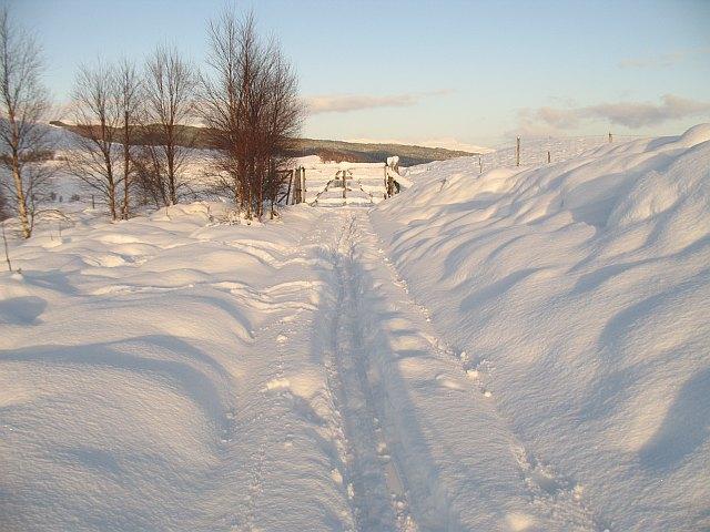 Invergarry - Dail a' Chuirn track