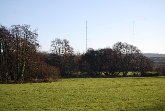 Trees along The Washford River