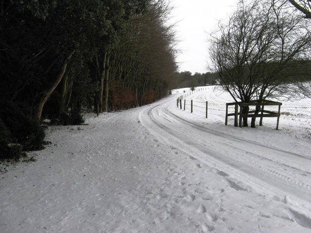 Private road running from the A 29 to Dale Park House