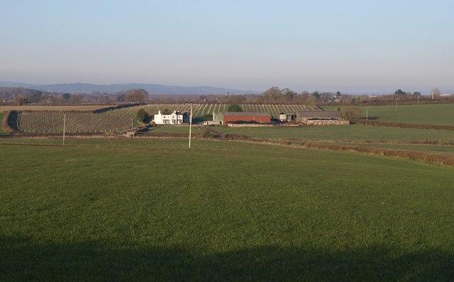Bushayes Farm