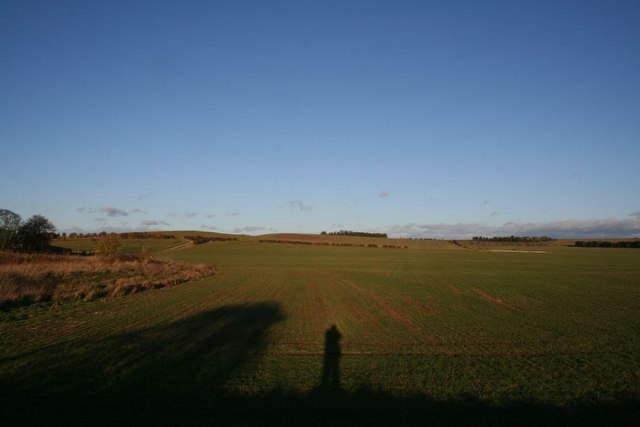 Looking towards the gallops