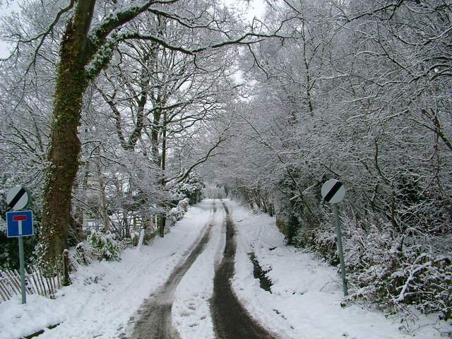 Limbourne Lane