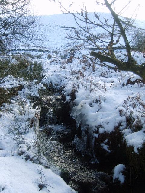Trough Brook