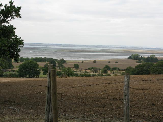 View NE from Basser Hill