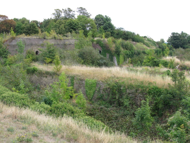 Some of the overgrown walls of Amherst Fort