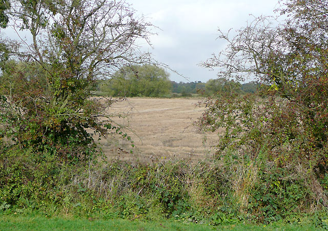 Arable land west of Alrewas, Staffordshire