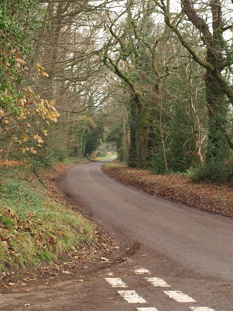 Lane at Crowcombe Heathfield